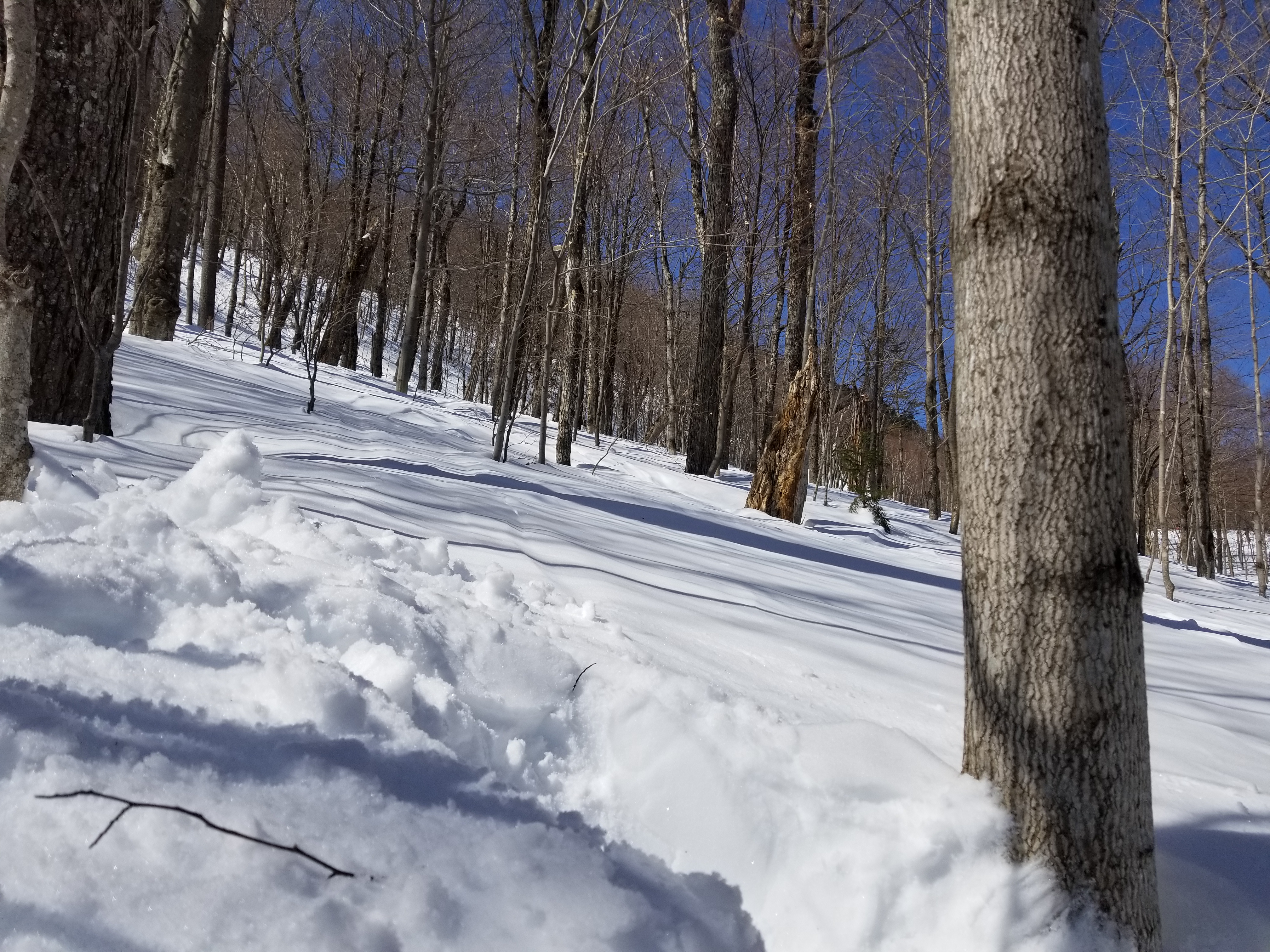 Mid mountain, Mad River Glen