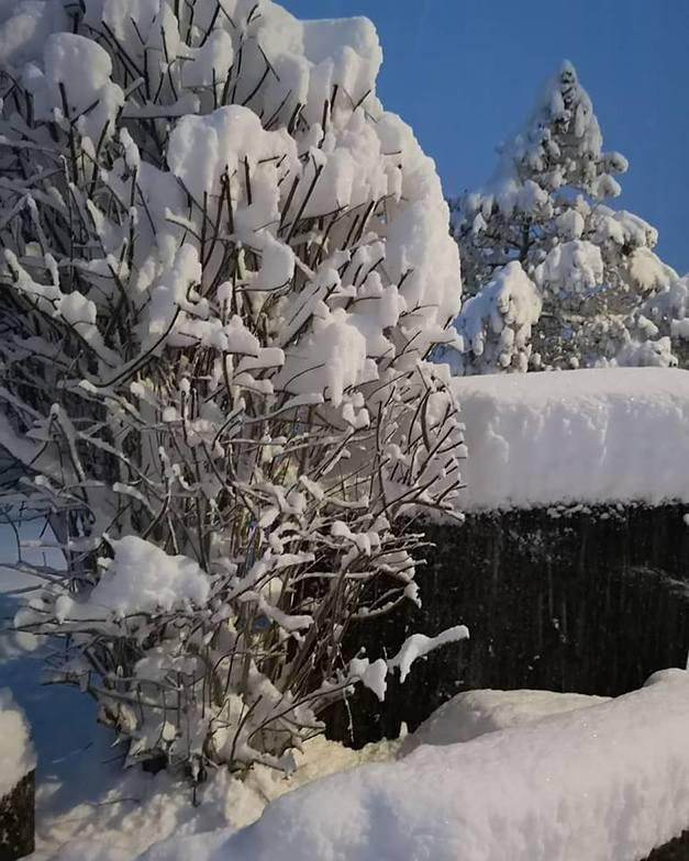 20cm in resort, 40cm at 2000m, Engelberg