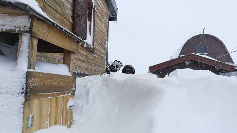 More than a metre of snow in the Dolomites in the last few days., Campitello