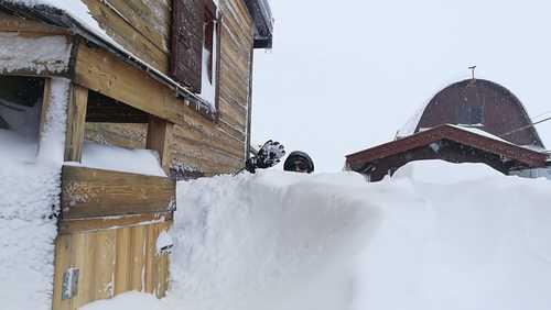 Campitello Ski Resort by: Snow Forecast Admin