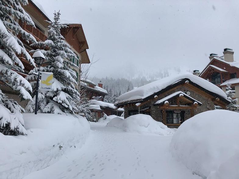 60cm (2ft) of snow fell in Utah during the last few days., Solitude