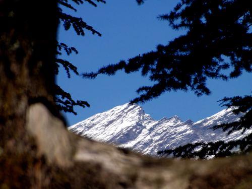 Manali (Himachal Heli-Ski) Ski Resort by: Snow Forecast Admin