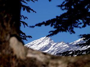 Manali, Manali (Himachal Heli-Ski) photo