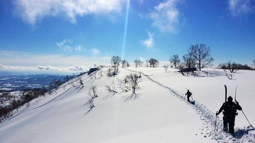 Niseko Annupuri Ski Resort by: Snow Forecast Admin