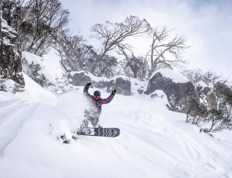 Report of 15cm in the last 24hrs., Perisher