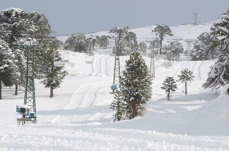 Caviahue Ski Resort. Temporada 2019
