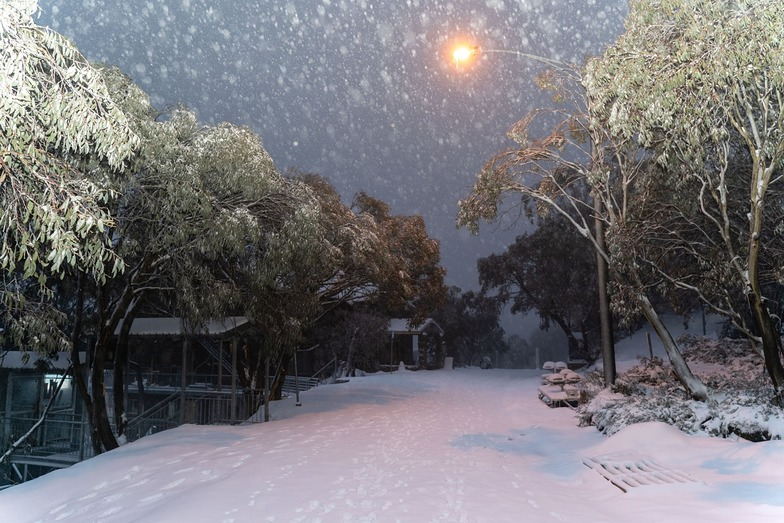 Fresh snow for the end of June., Falls Creek