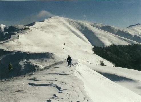 Sinaia snow