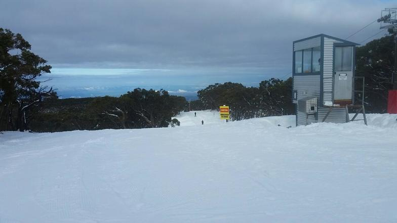 Good cover, Mount Baw Baw