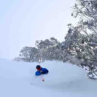 20cm in the past 24 hours., Mount Hotham