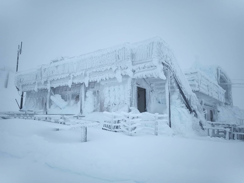 Transformed into an impressive ice palace in the mist., Turoa