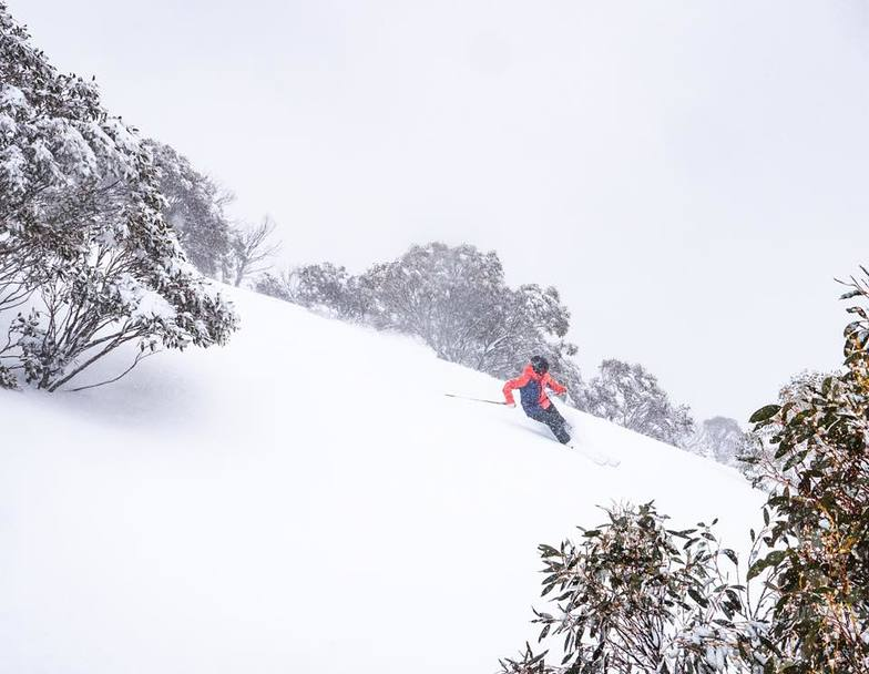 20cm of late season snow in 24 hours, Perisher