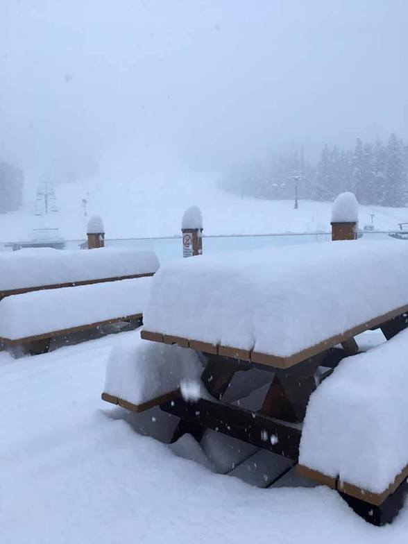 25cm for the resort, Lake Louise