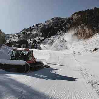 2019-20 season has started, Masella