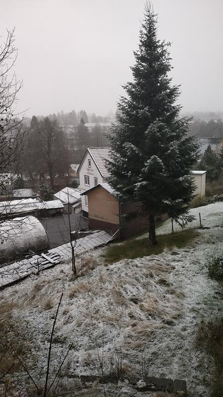 Snowfall on 16th November 2019, Clausthal-Zellerfeld/Buntenbock