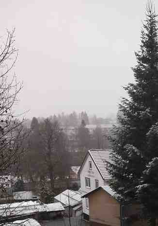 Snowfall on 16th November 2019, Clausthal-Zellerfeld/Buntenbock