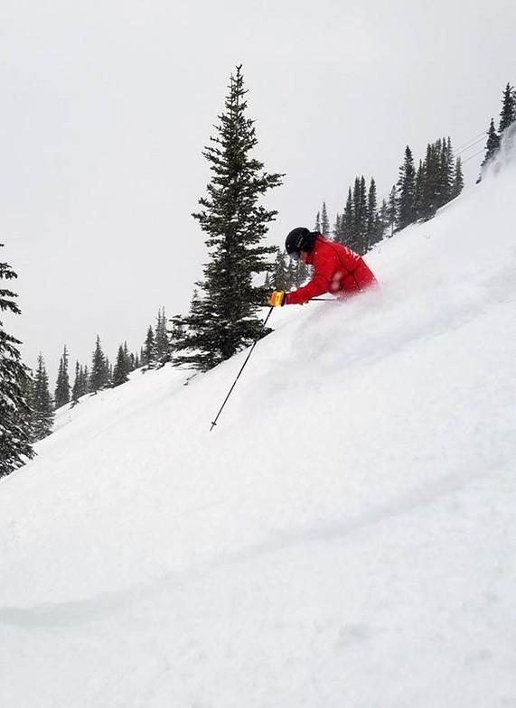 16cm of fresh snow...., Marmot Basin