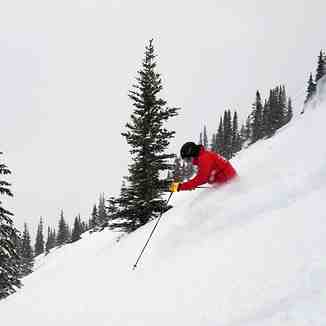 16cm of fresh snow...., Marmot Basin
