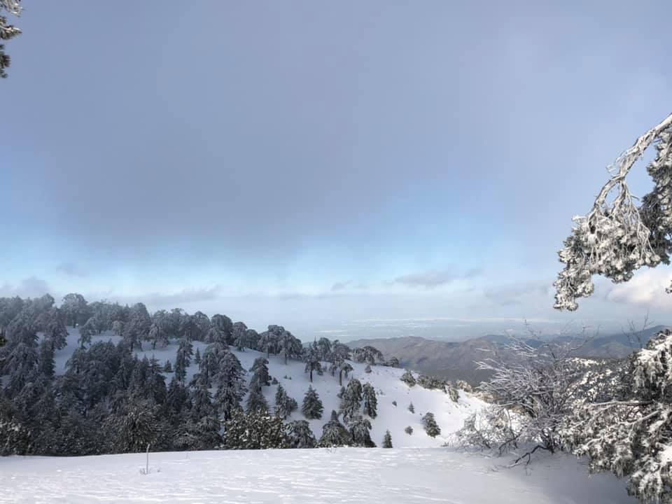 Troodos, Mt Olympus