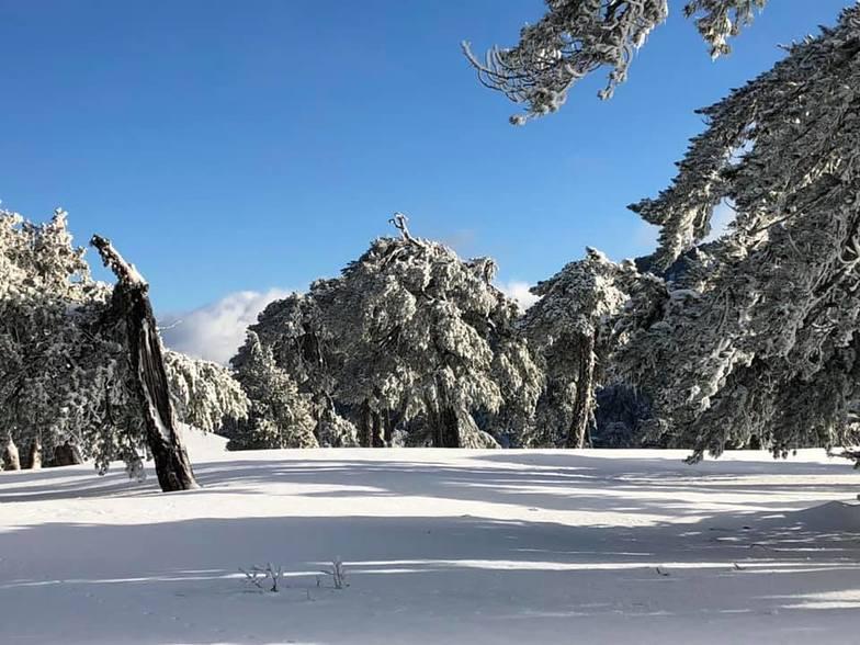 Troodos Snow, Mt Olympus