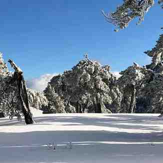 Troodos Snow, Mt Olympus