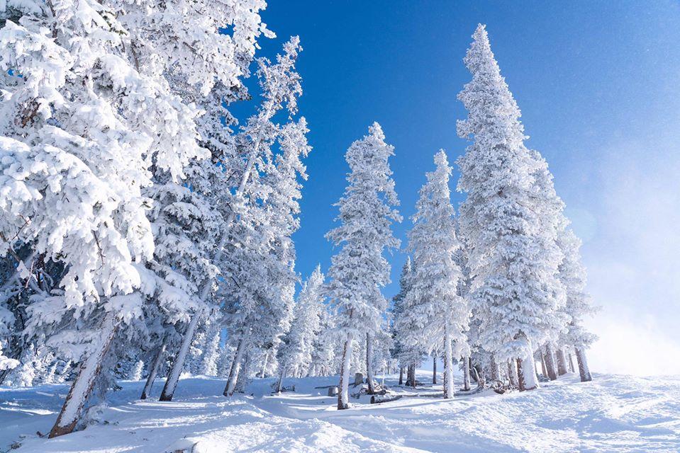 4ft/1.2m of snow in the last week, Keystone