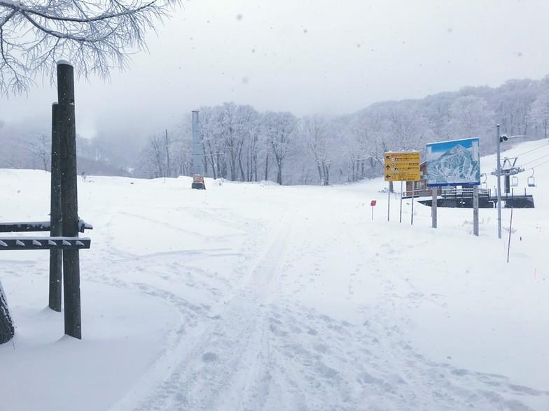 now open after warm weather, Nozawa Onsen