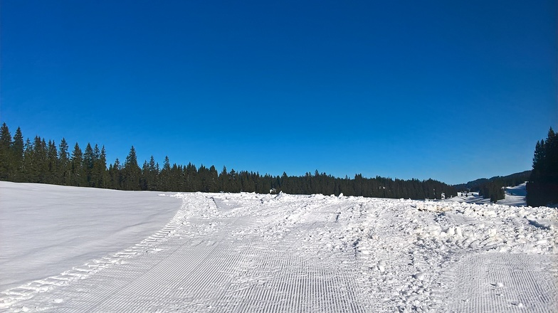 Le Brassus / Vallée de Joux snow