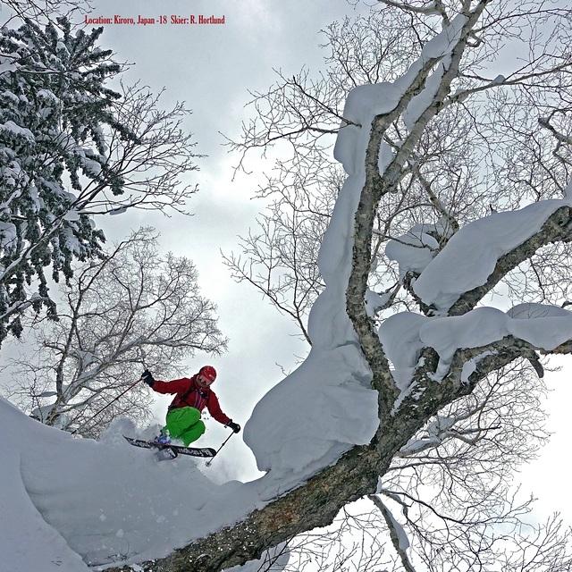 TreeSkiing!...Japan, Kiroro Resort