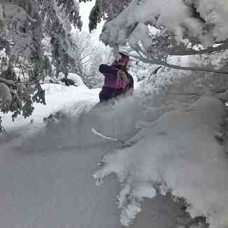 "49cm (20"") of snow in the past week, Smuggler's Notch"