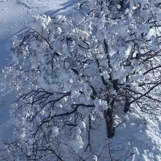 סקי כחול לבן הסעות לחרמון, Mount Hermon