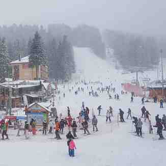 snow falling at last, Borovets