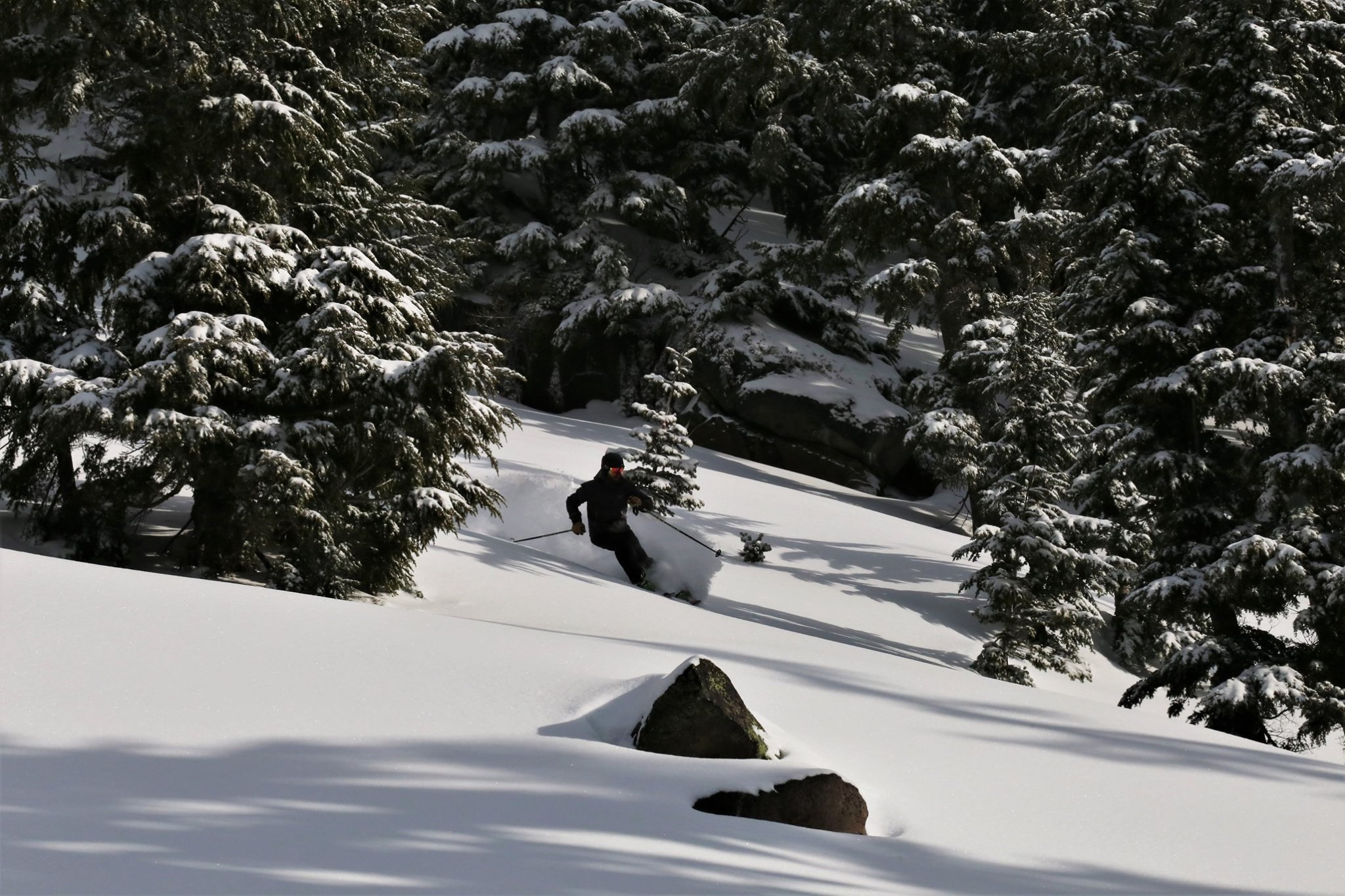 first to report more than 5m (17ft) snow depth on upper slopes, Mt Hood Meadows