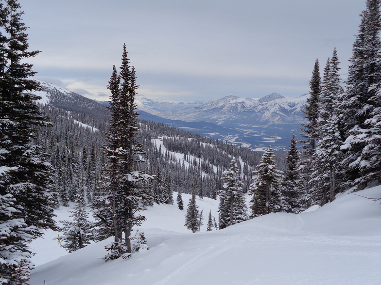 A cold Hobbit's Hollow, Marmot Basin
