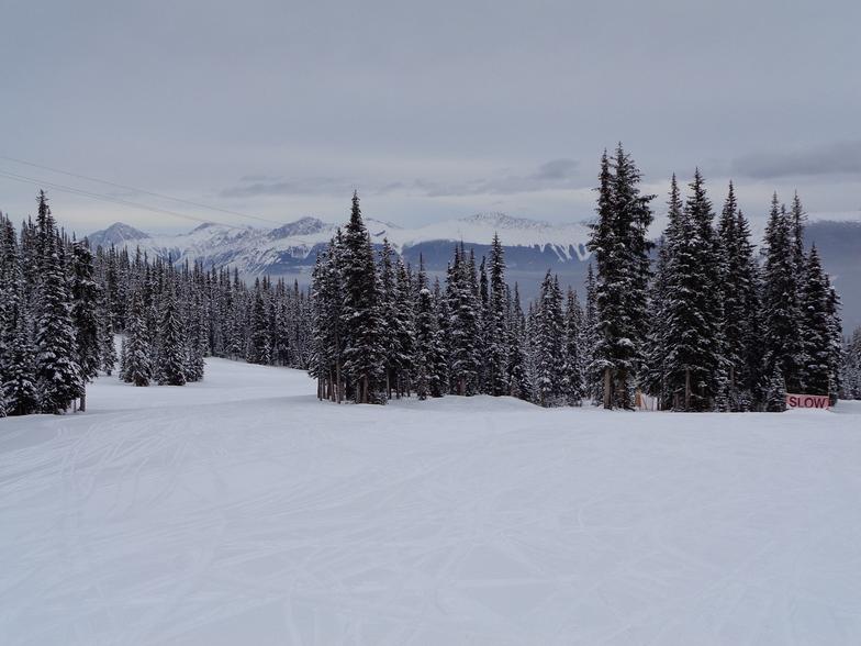 Mid Elevation Inversion, Marmot Basin