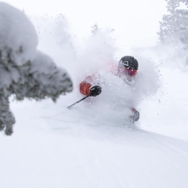 up to 55 inches (1.4m) in Colorado & Utah, Crested Butte