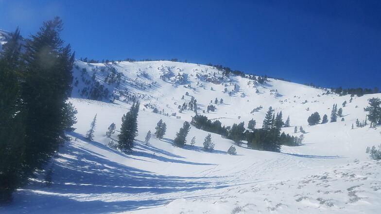 Cat Ski Ara, Peak 2, Soldier Mountain