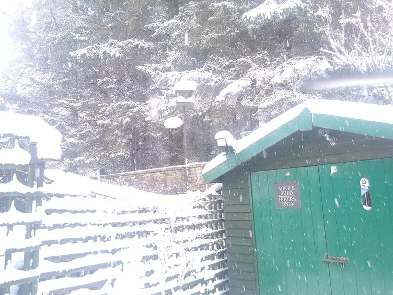Snow in my back yard, Allenheads