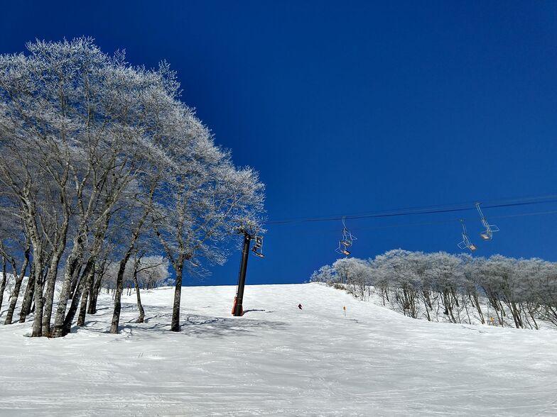 Hakuba February 22 2020, Hakuba Highland