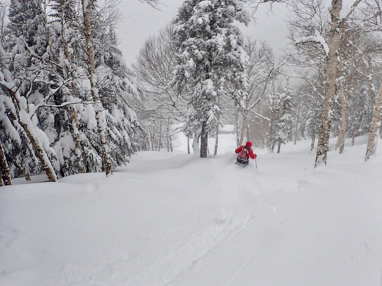 """20"""" (60cm) in the past 30hrs, Smuggler's Notch"""