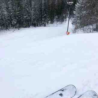"""20cm (8"""") in 24hrs at last, Tryvann"""