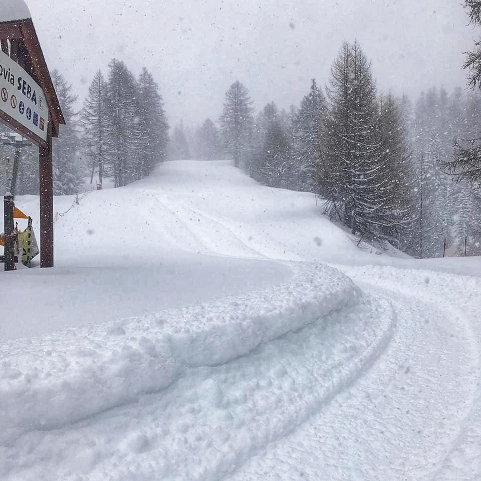 """more than 50cm (20"""") of snowfall in the past 24 hours., Bardonecchia"""