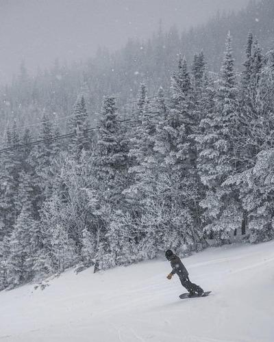 Wildcat Mountain  Οδηγός Χιονοδρομικού Κέντρου