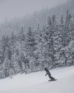 snow is falling, Wildcat Mountain photo