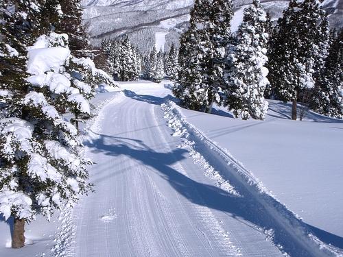 Snow Wave Park Shiratori Kogen Ski Resort by: sibasaki