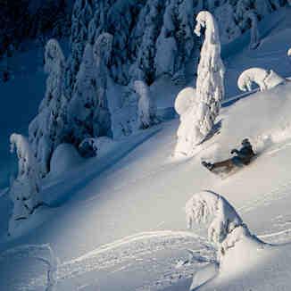 asdfsd, Eaglecrest Ski Area