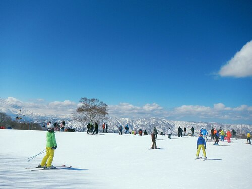 Nozawa Onsen Ski Resort by: tourist offical