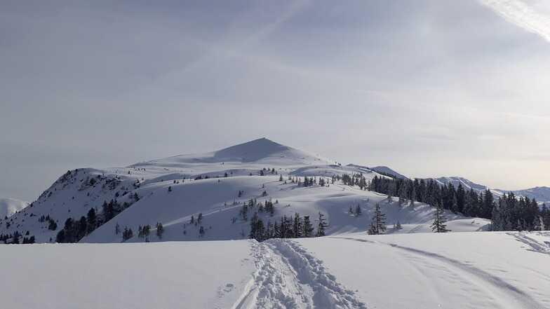 Niederau - Wildschonau snow