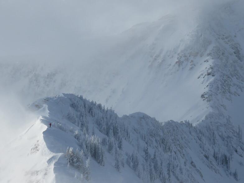 Ski Patrol, Snowbird