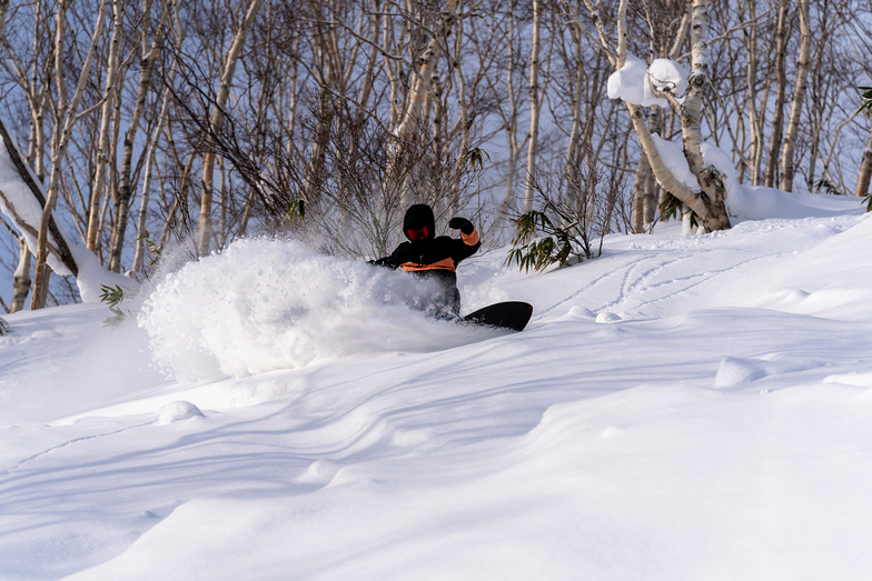 Fresh Powder days in Jan 2020, Niseko Moiwa